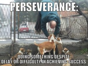 The Pursuit of Perseverance